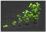 organic_growth_graph_400_clr_5097